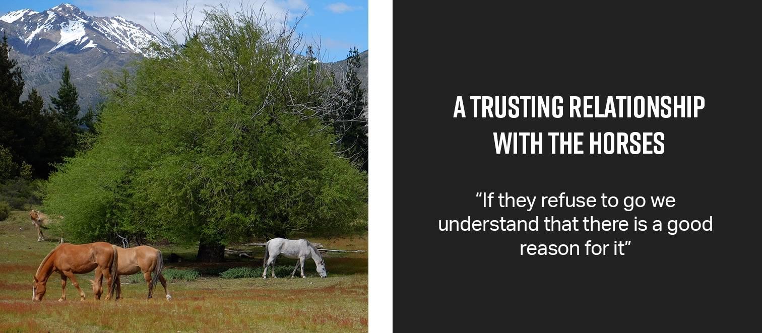 trustinglink